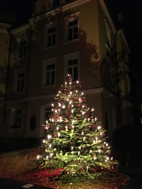 a Christmas tree in Munich